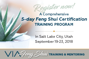Tina Falk VIA Feng Shui, Certification Program