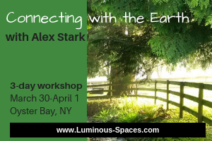 Connecting with the Earth - by Luminous Spaces and Alex Stark