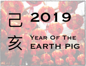 Year of the Earth Pig Forecast with Anita Rosenberg