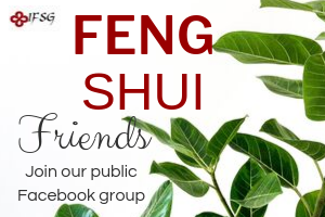 Join our Public Facebook Group