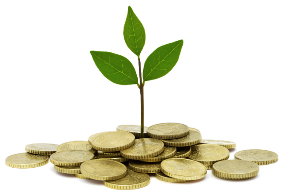 Feng Shui for Attracting Wealth and Prosperity
